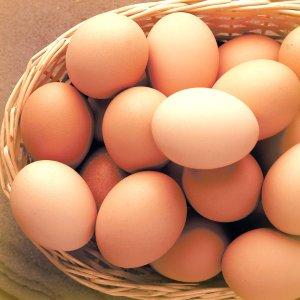 shopify-item-eggs_4e04763a-c7c7-4431-9817-a884fc159534.jpg