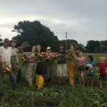 Andy, Osiris, Rachel, Angela, Liana, Matt, Hana, and three half-pint volunteers help with the onion harvest.