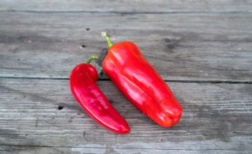 Sweet red italian peppers