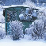 Garden Shed in the Snow